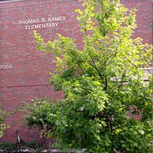 Ramey Elementary