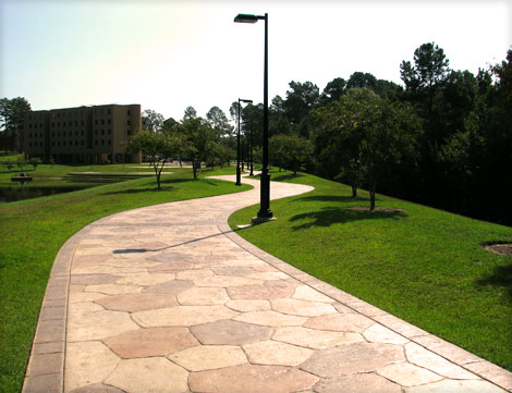 UT Tyler Lake Area